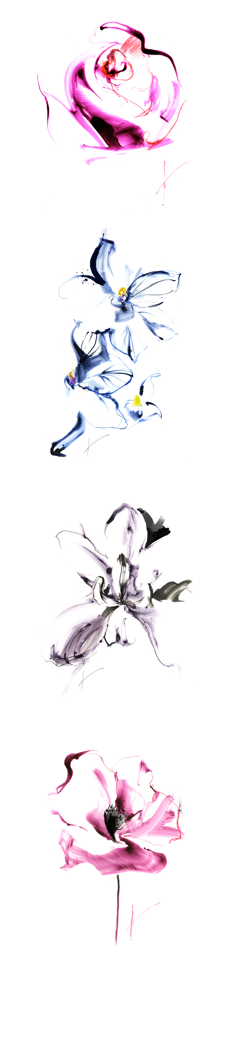 flower_drawing_01